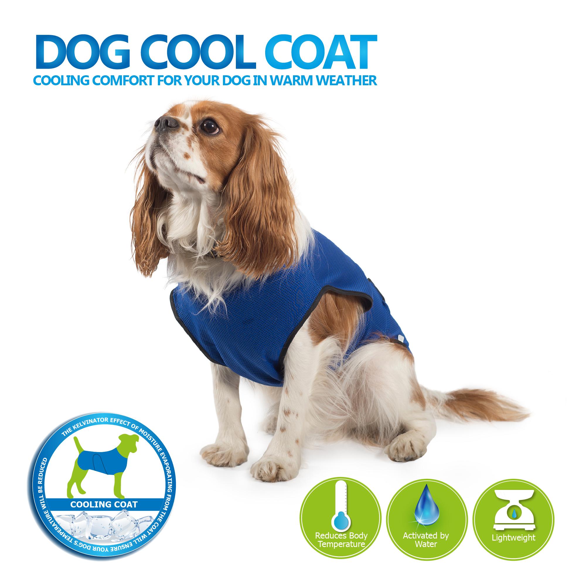 Chladící vesta pro psy