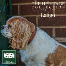 Latigo Leather Collar Chestnut 20-26cm Size 1
