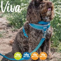 Viva Padded Lead Blue 1mx19mm