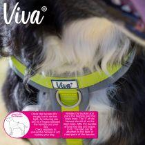 Viva Padded Harness Lime XL 70-98cm