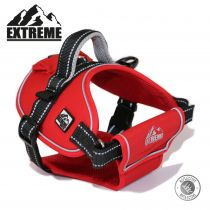 Extreme Harness Red S