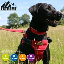Extreme Harness Red L