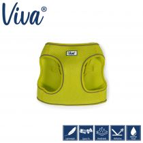 Step-in Harness Lime XS 30-36cm