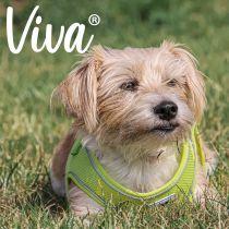 Viva Step-in Harness Lime M 46-54cm