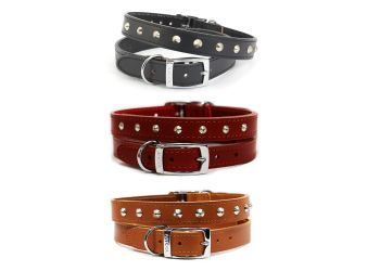 Leather Stud Collar Tan 26-31cm Size 2