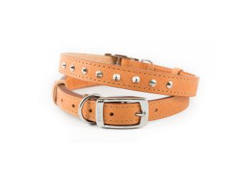 Diamond Stud Collar Tan 36-46cm M