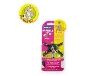 Ferret Harness Set