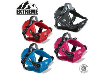 Extreme Harness Black S