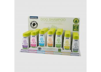 Shampoo Starter Deal With  Display tray 7