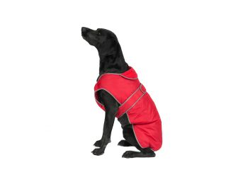 Stormguard Dog Coat Red S