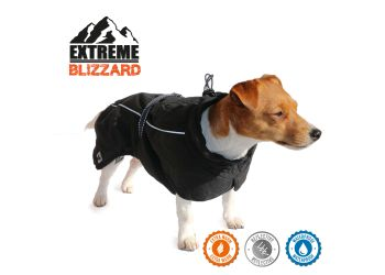 Extreme Blizzard Dog Coat Black 35cm S/M