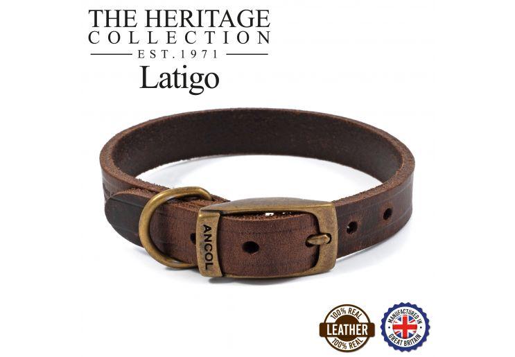 Latigo Leather Collar Havana 20-26cm Size 1