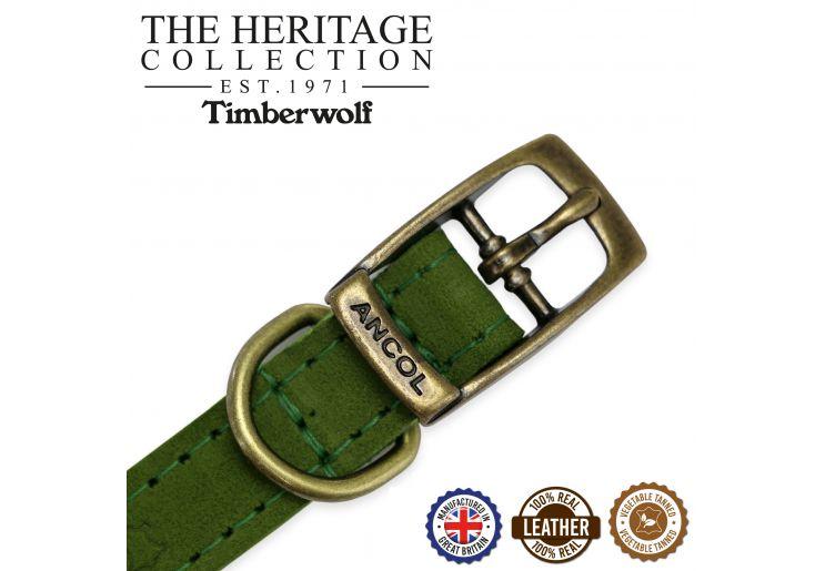 Timberwolf Leather Collar Green 26-31cm Size 2