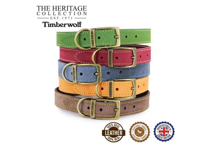 Timberwolf Leather Collar Green 35-43cm Size 4