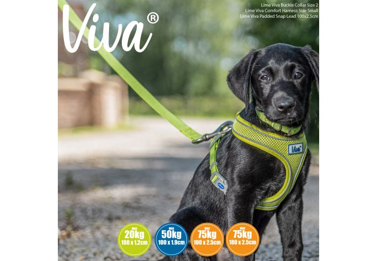 Viva Padded Lead Lime 1mx19mm