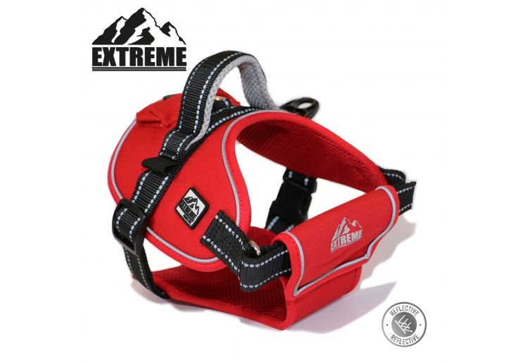 Extreme Harness Red M