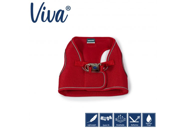 Step-in Harness S/M Red