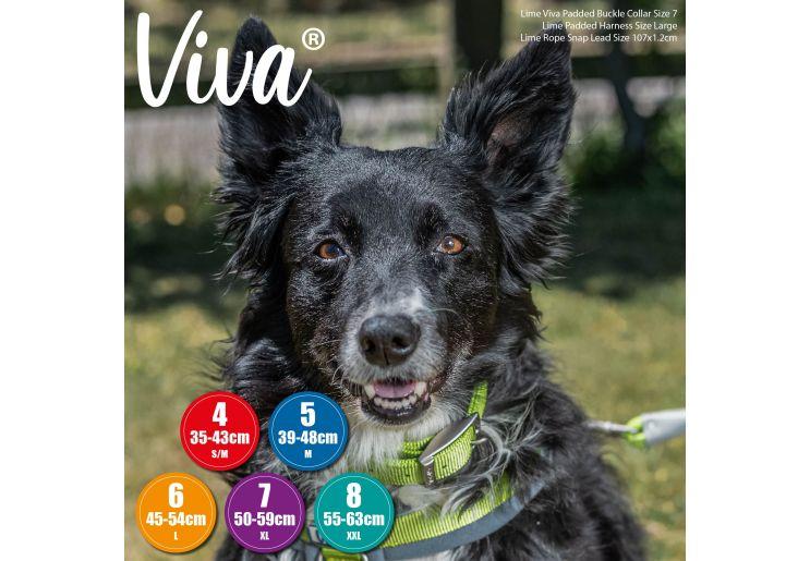 Padded Viva Collar Black 35-43cm Size 4